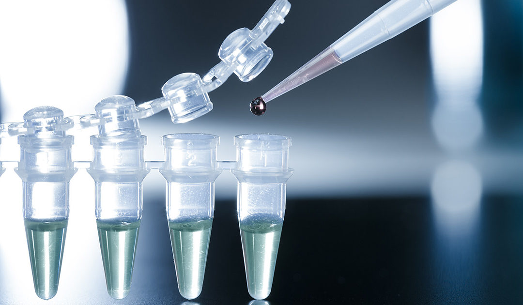 Addressing the Controversy Surrounding Using Stem Cells in Medical Treatments
