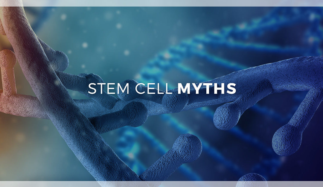 6 Myths About Stem Cells