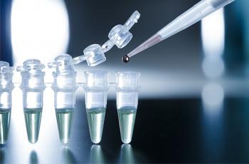 myths about stem cells