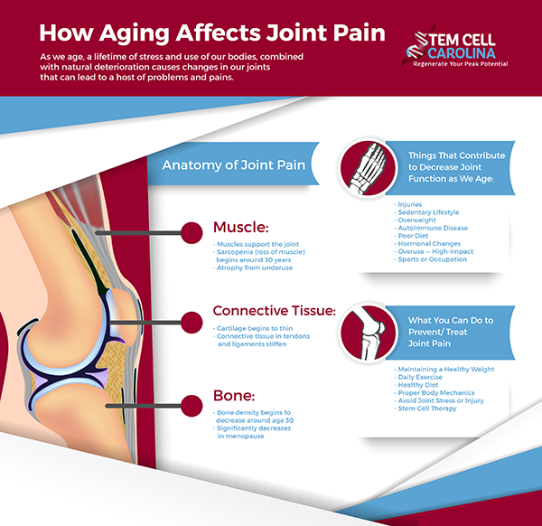 anatomy of joint pain