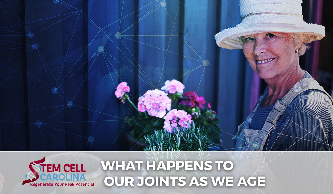 What Happens to Our Joints as We Age